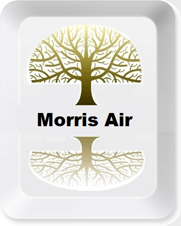 Morris_Air_Button.jpg