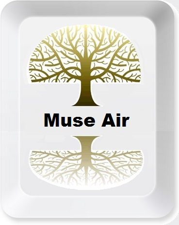 Muse_Air_Button_2.jpg