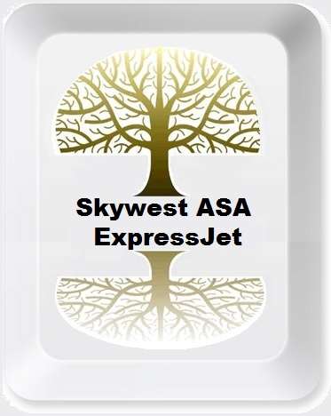 SkywestASAExjetButton.jpg